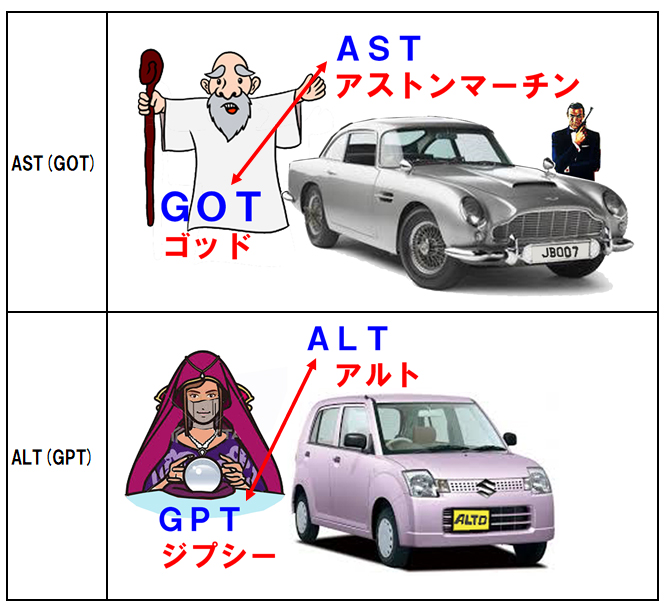 GOT/GPT