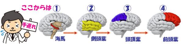08脳ダメージ